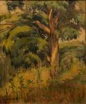 """JORDÃO DE OLIVEIRA (1900-1980). """"Paisagem da Mata Atlântica"""", óleo s/ tela, 46 x 37. Assinado no c.i.e. Década de 40. Reproduzido com foto no catálogo."""